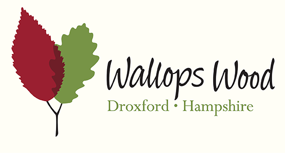 wallops wood ID home page slider D1