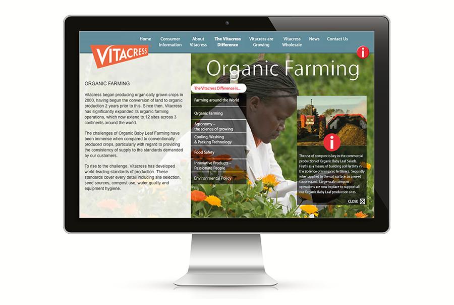 Website design for salad producer, Vitacress Salads, near Southampton, Hampshire